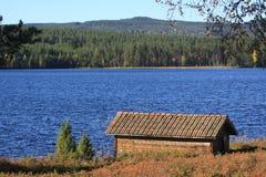 En sjö i skogen Royaltyfria Foton