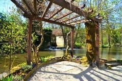 En sjö i trädgården Arkivbilder