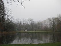 En sjö i Vondelparken, Amsterdam fotografering för bildbyråer