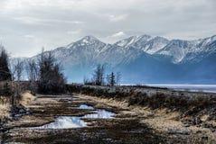 En sjö med bergskedja reflekterad i det delvist fryste vattnet av en sjö i den stora alaskabo vildmarken. Arkivbilder
