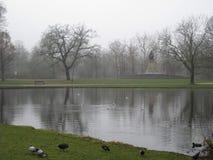 En sjö och träd i Vondelparken, Amsterdam arkivbilder