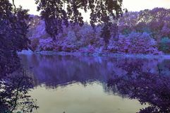 En sjö på Autuun arkivfoto