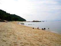 En sjösida av pangkorön med gulaktig sand, Malaysia Royaltyfri Fotografi