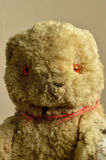 En sjabbig tappning Teddy Bear Royaltyfria Bilder