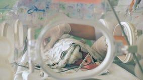 En sjuksköterska tar omsorg av ett nyfött behandla som ett barn, stänger sig upp arkivfilmer