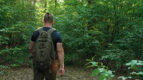 En skäggig man med en ryggsäck går till och med skogen som kameran flyttar efter honom Natur resa lopp stock video