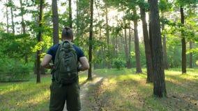 En skäggig man med en ryggsäck står i träna och ser omkring Mannen startar att promenera skogbanan Kameraflyttningarna arkivfilmer