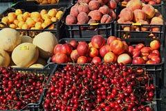 En skärm av frukt Royaltyfri Fotografi
