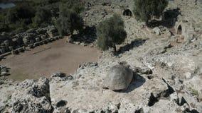 En sköldpadda som ser ner från nära överkanten av lager videofilmer