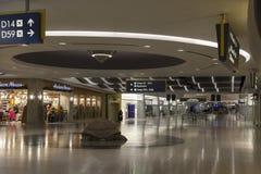 En sköldpaddaskulptur på den McCarran flygplatsen i Las Vegas, NV på Juli Arkivfoto