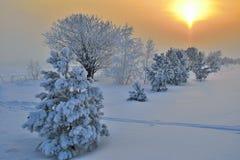 En skönhet av vinterlandskapet Royaltyfria Bilder