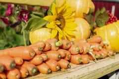 En skörd av nya grönsaker ligger på en bänk i den öppna luften fotografering för bildbyråer