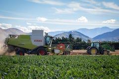 En skördetröska och en traktor fungerar på en lantgård som skördar en skörd royaltyfri fotografi