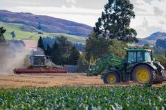 En skördetröska och en traktor fungerar på en lantgård som skördar en skörd arkivfoton