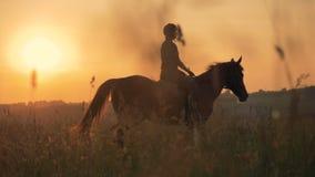 En skicklig ryttarinna går långsamt En kvinna rider en häst långsamt i ett stort fält lager videofilmer