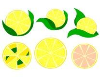 En skiva av citronclipart Arkivbilder