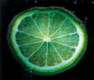 En skiva av citronen i bubblor Arkivfoto