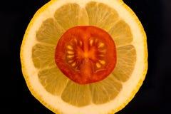 En skiva av en tomat ligger på en skiva av citronen Arkivbild