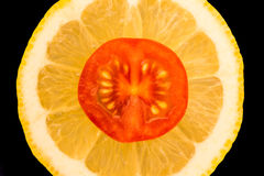 En skiva av en tomat ligger på en skiva av citronen Royaltyfri Foto