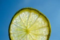 En skiva av limefrukt, citrus i solen arkivfoto