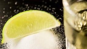 En skiva av limefrukt på salt i fokus arkivbilder