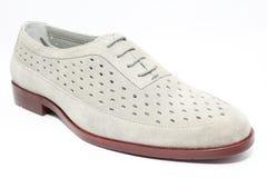 en sko Fotografering för Bildbyråer