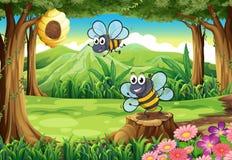 En skog med bin och en bikupa Royaltyfri Fotografi