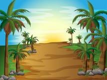 En skog med många palmträd vektor illustrationer