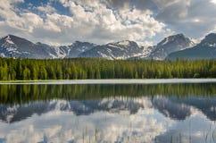 En skog reflekterad i en sjö Arkivfoton