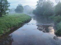En skogflod i en dimma Fotografering för Bildbyråer