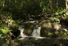 En skogliten vik med en vattenfall Royaltyfri Foto