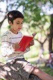 En skolpojke sitter på trädet med boken och läser arkivfoton
