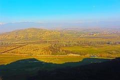 En skrikig koja och ett landskap runt om general Todorov, i det avlägsna Pirin berget Arkivbild
