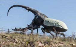 En skulptur av en stor västra indierHercules skalbagge i Colorado Springs, Colorado Arkivbild