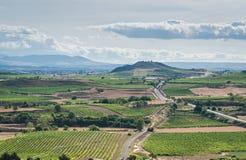 En skyine av vingårdar i Rioja, Spanien Royaltyfri Foto
