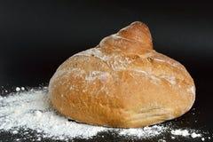 En släntra av bröd royaltyfri bild