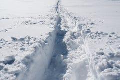 En slinga på snöig lutning upptill av berget royaltyfri foto