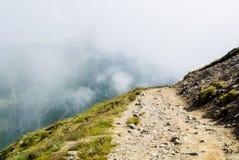 En slingrande bana som går ner i de Carpatian bergen och en bi Arkivbilder