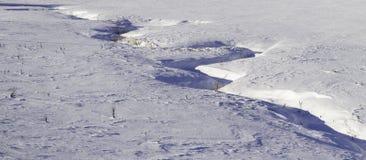 En slingrande ström som definieras av snö Royaltyfria Bilder