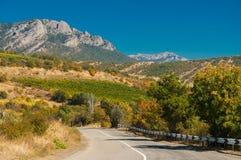 En slingrig väg mot bakgrunden av vingårdar royaltyfri foto