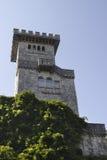 En slott i Kaukasuset Arkivfoto