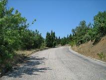 En smal asfaltväg på en varm solig dag förbi vintergröna träd och sol-bränt gräs fotografering för bildbyråer