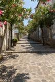 En smal brant gata med blommande oleander i Ravello amalfi kust italy fotografering för bildbyråer