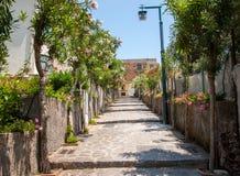 En smal brant gata med blommande oleander i Ravello Amalfi kust royaltyfria bilder
