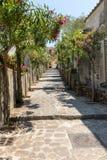 En smal brant gata med blommande oleander i Ravello Amalfi kust royaltyfri bild