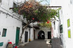 En smal gata i Tetouan royaltyfri fotografi