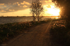 En smal strandbana under solljus i morgonen royaltyfria bilder