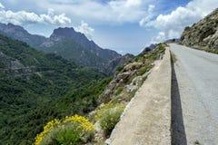 En smal väg i de höga bergen i inre Royaltyfri Bild