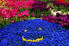 En smiley av blommor Royaltyfri Bild