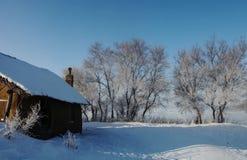 En snö som förlägga i barack av rimfrostträd Royaltyfri Bild